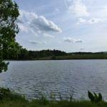 Hammerschmiedesee im Sommer